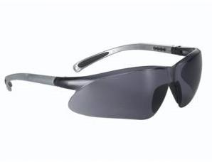 My-T-Gear veiligheidsbril 760 zilver montuur / grijs anti fog glas
